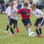 2014 Schwann's USA Cup