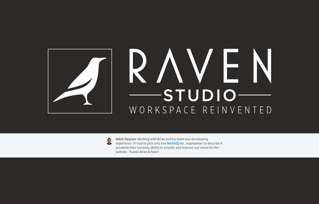 Raven Studio - Quote from Mitch Dawson