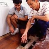 Termite Damage to Floor