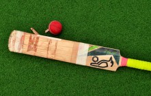 The end... when a bat becomes a plank...