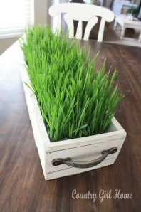 Try using an old draw as a planter - http://pinterest.com/pin/232357661996903627/