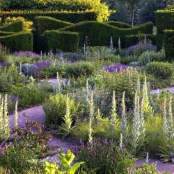 From Dream to Reality: How to Choose a Garden Designer