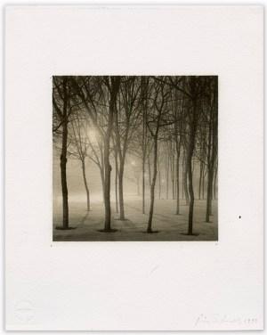 """Bill Schwab – """"Rouge Park, Detroit 1999"""""""