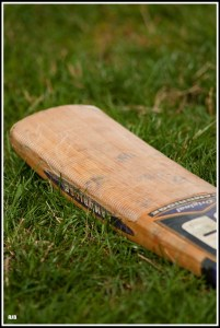 Cricket Bat at Rest