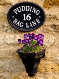 Violas Pudding Bag lane