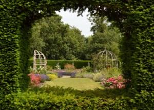 framed garden view small