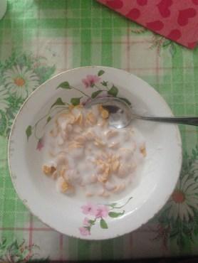cornflakes and yogurt!