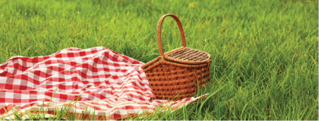 This image has an empty alt attribute; its file name is picnic.png