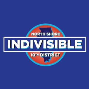 North Shore Indivisible Monthly Meeting @ Deerfield Public Library