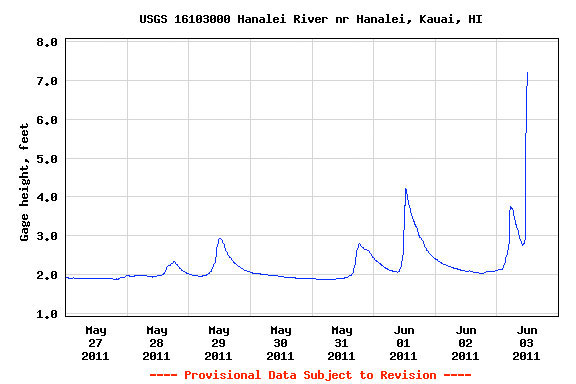 Hanalei River - June 3 2011 - 12 noon