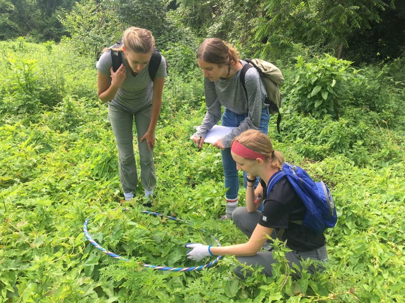 O'Neil Stewards working at the Humes Meadow