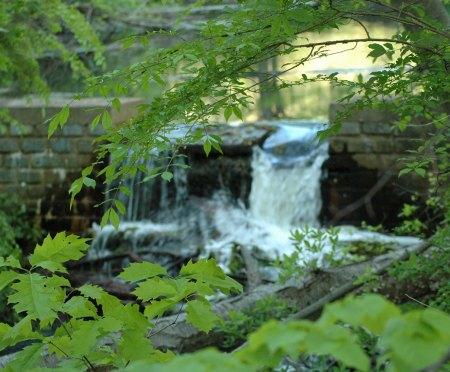 Upper-Francis-Pond-Spillway_1040