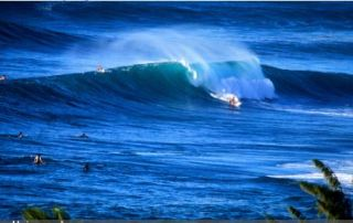 surfing on the North Shore