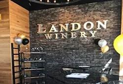 Landon at The Sound