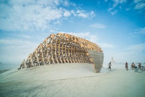 The Wave, Burning Man 2014: In Dust We Trust - Photos of a Dusty Playa