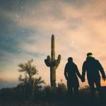 A saguaro cactus at Tortilla Flat, Arizona