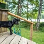 Adirondack Woodcraft Camps