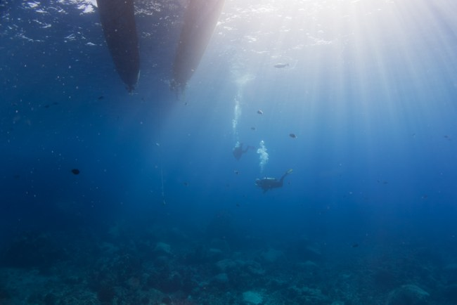 Diving on Hawaii's Big Island with Kona Diving Company