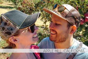 Apple Hill Anniversary