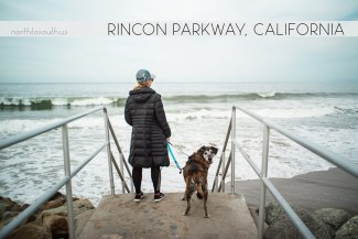 North to South's Year in Review 2019 | Rincon Parkway, California with Tiger