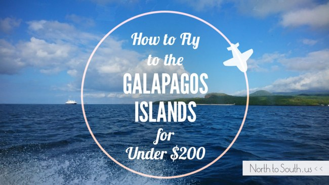 How to Fly from the U.S. to the Galápagos Islands for Under $200