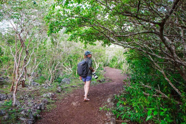 What to Pack for the Galápagos Islands: walking in the highlands