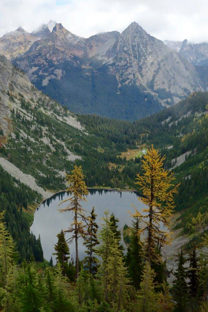 Larches beginning to turn above Lake Ann
