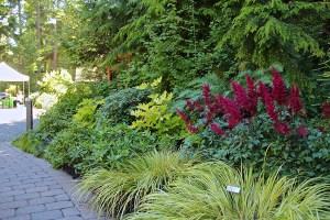 shade garden landscaping