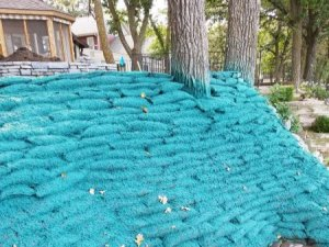 Hydroseeded Eco Bags on Lakebank