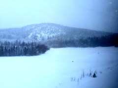 Landscape outside train