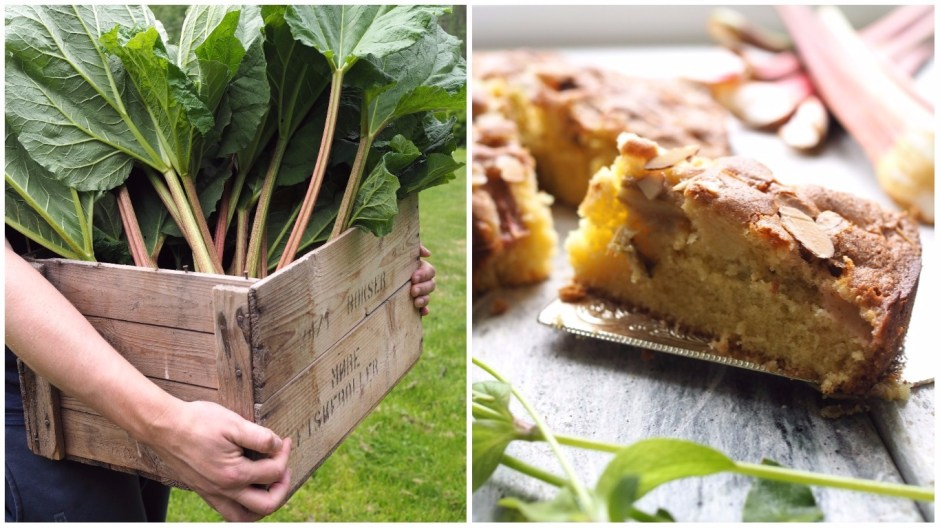 Simple Norwegian Rhubarb Cake (Rabarbrakake)