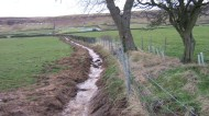 Esk tributary - drainage ditch acting as a source of sedimentation and harmful nutrients