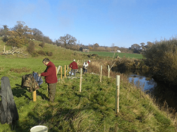 River Esk Volunteers - tree planting along the Esk