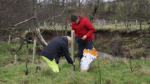 Environment Agency volunteers - tree planting