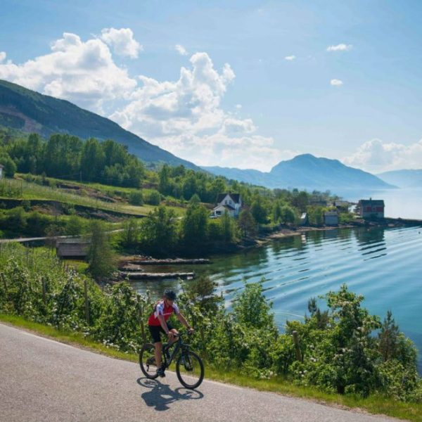 Riding bike along Hardangerfjorden in Hardanger