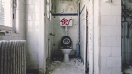 toilet, holiday stomach