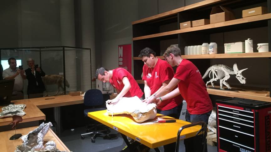 Unpacking the Triceratops skeleton parts in Naturalis museum, photo by Pauline Broekema/NOS