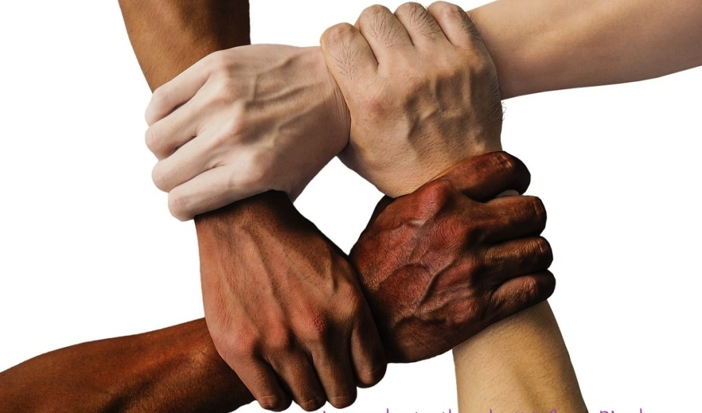 Various colored hands grasping together