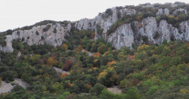 Imagen del macizo rocoso y los bosques mixtos de la Font Roja (Alcoi, Alicante)