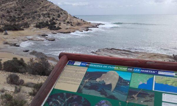 La flora de este paraje es especialmente vulnerable (Alicante, 2016)