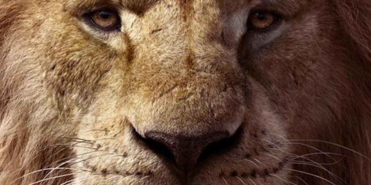 Trilha sonora de Rei Leão é liberada na internet