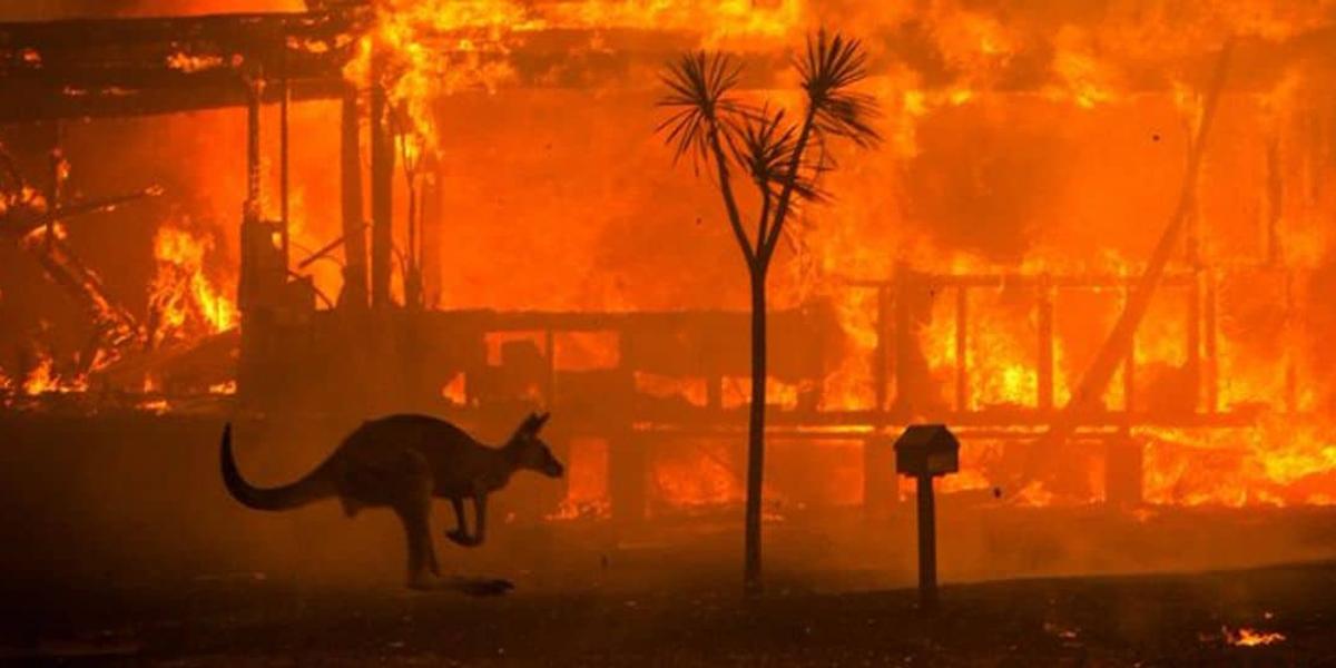 Hugh Jackman publica mensagem a respeito dos incêndios na Austrália