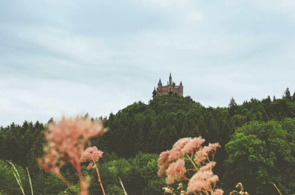 La Forêt Noire : de Fribourg en Brisgau à Tubinguen