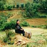 sapa rizière vietnam