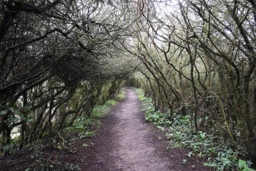 Chemins de randonnée