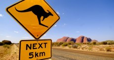 travel_australia_kangaroo_road_nature_1