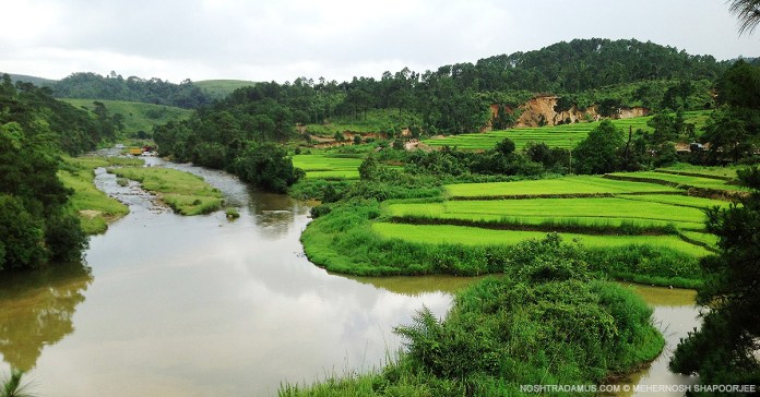 Green flows the river in Meghalaya