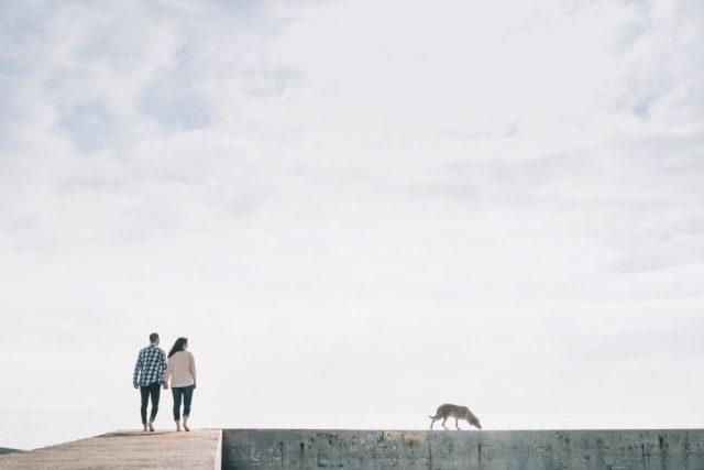 ariadna creus-fotografo mascotas-familia