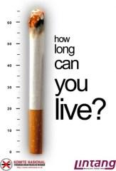 Smoking_Kills_by_pu3w1tch1-500x738