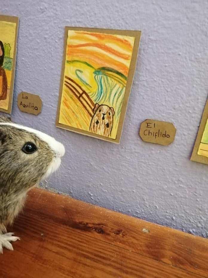Exposición temporal Cui 20: una usuaria de Facebook recrea pinturas icónicas para sus cuyos 14